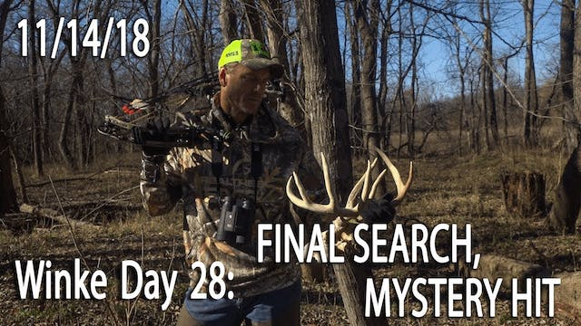 Winke Day 28: Final Search, Mystery Hit