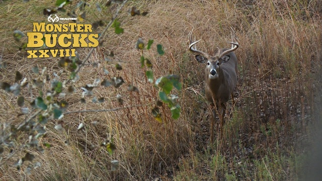 Grant Taylor's Giant Kansas Buck | Realtree's Monster Bucks