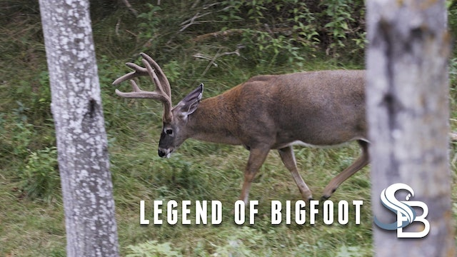 The Legend of Bigfoot | A Giant Northeastern Whitetail | Sea Bucks