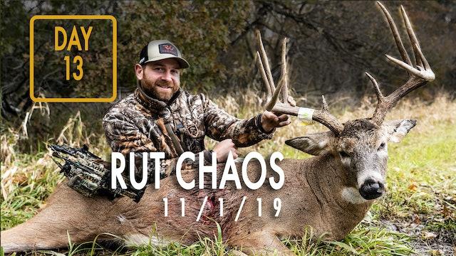 Jared Day 13: Big Bucks Chasing Does, Classic Rut Hunt