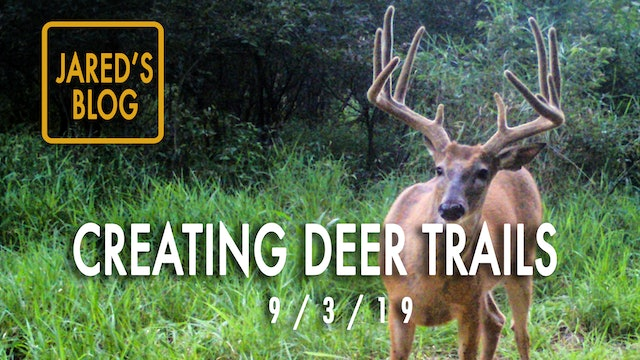 Jared's Blog: Creating Deer Paths, Trail Cams, Plot Rescue