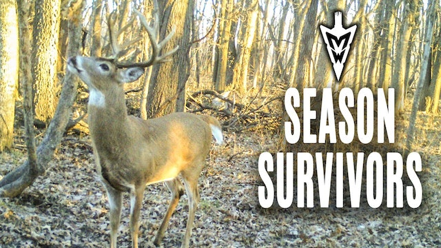 3-11-19: How to Make Your Farm Hunt Bigger | Midwest Whitetail