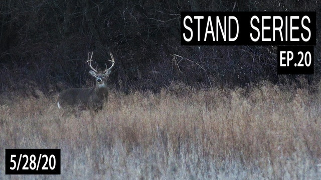 When Blinds Are Better | Bill Winke Treestand Location Series