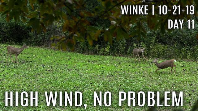 Winke Day 11: High Wind, No Problem
