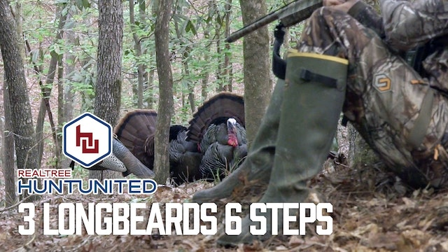 Three Boss Toms With Bad Tempers | Mississippi Turkey Hunt | Hunt United