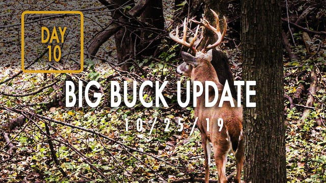 Jared Day 10: Big Buck Update, Close-...