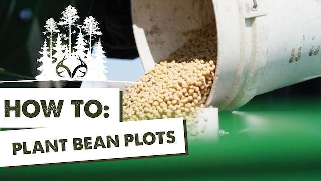 Manipulating Deer Movement with Food Plot Configuration and Fencing | Pay Dirt