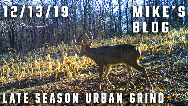 Mike's Blog: Late-Season Urban Grind