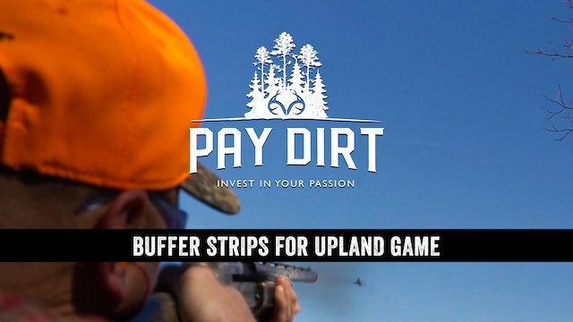 How to Get Paid for Creating Upland Habitat Buffer Strips