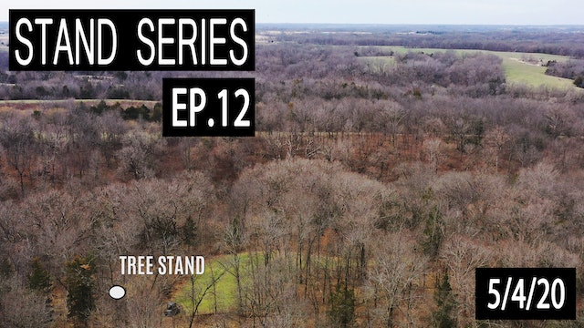 The Perfect Bow Stand | Bill Winke Treestand Location Series
