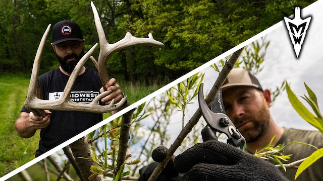 """A DIY Deer Cover Experiment, The Game Plan for """"Dak"""" 