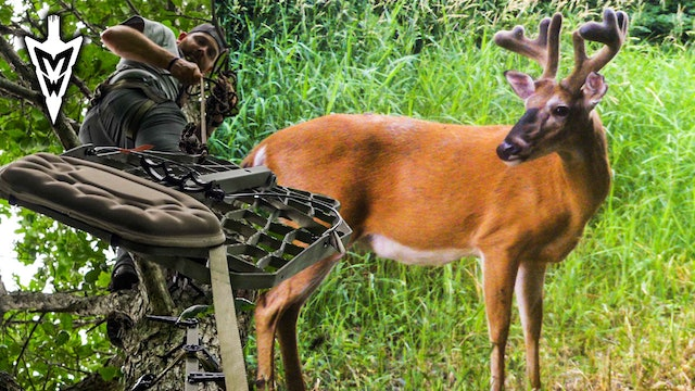 First River Farm Card Pull, Save $$$ On USA Tree Stands | Midwest Whitetail