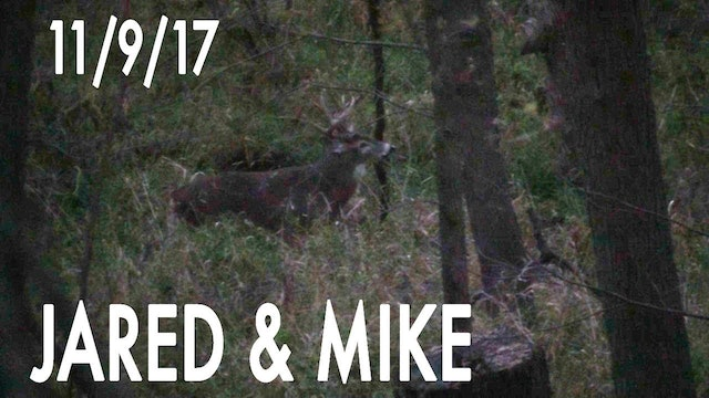 Jared's Blog: Hot Doe Flurry, Buck Named JJ