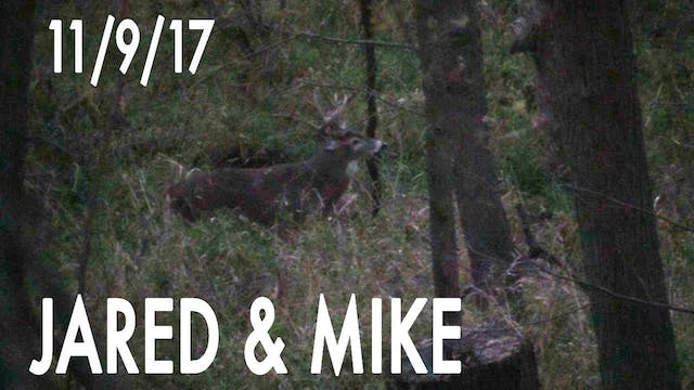 Jared's Blog: Hot Doe Flurry, Buck Na...