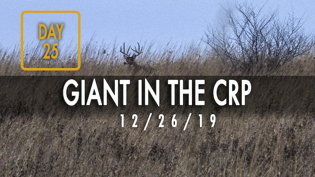 Jared Day 25: Giant Buck Chases Doe i...