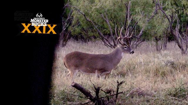 Kip Campbell's Monster Texas Buck | Monster Bucks 2021