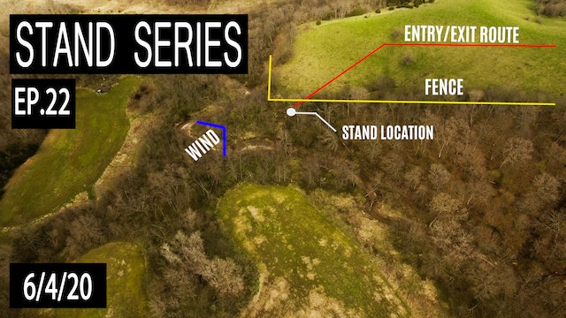 The Inside Corner Stand | Bill Winke Treestand Location Series
