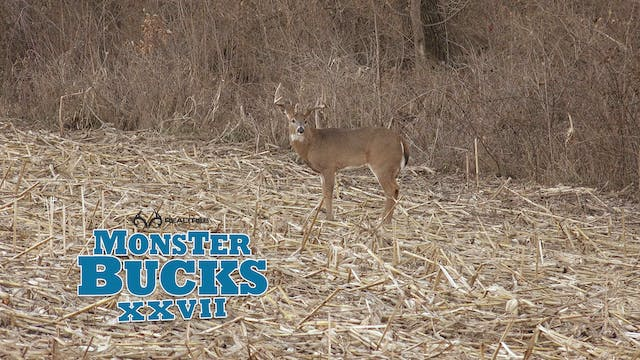 Tyler Rees Monster Buck