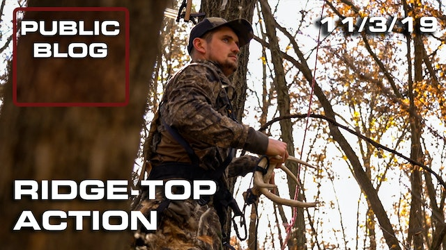 Public Land Blog | Ridge-top Action