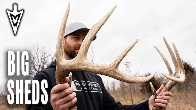 Piling Up Big Shed Antlers, Frost Seeding Clover in Iowa | Midwest Whitetail