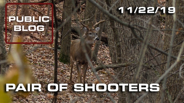 Public Land Blog | Pair of Shooters