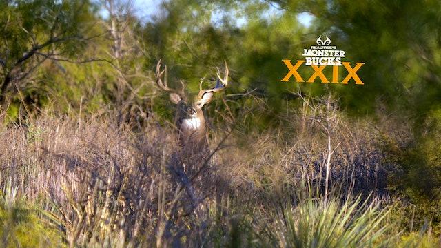 Jarrod Nichols Hunts Rutting Texas Bucks | Monster Bucks 2021