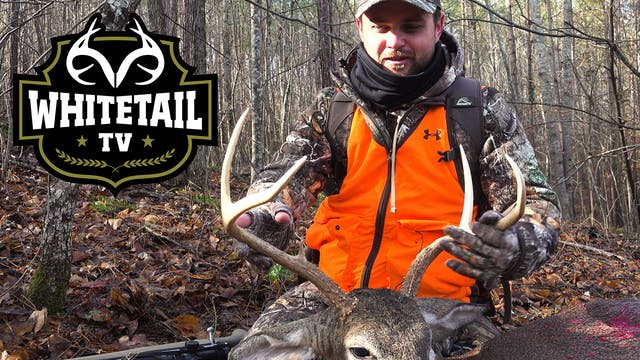 Incredible Late-Season Deer Hunts
