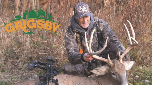 Bucks Are Falling at the Grigsby | Mature Buck at 5 yards | Grigsby