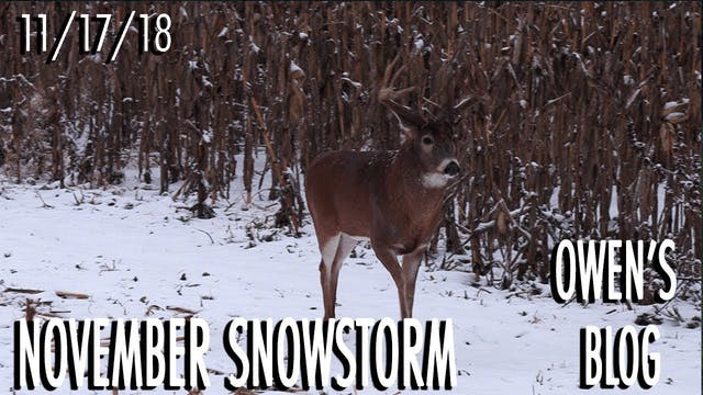 Owen's Blog: November Snowstorm