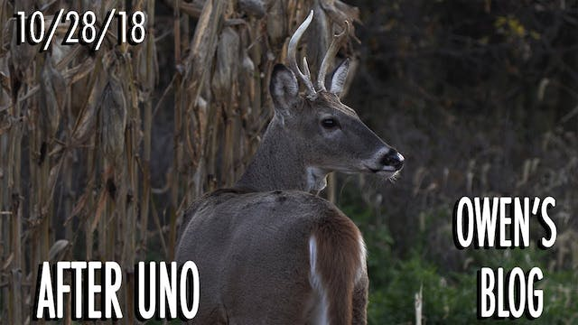 Owen's Blog: Windy Day Buck Hunt