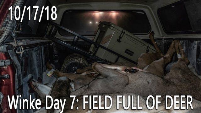 Winke Day 7: Field Full of Deer