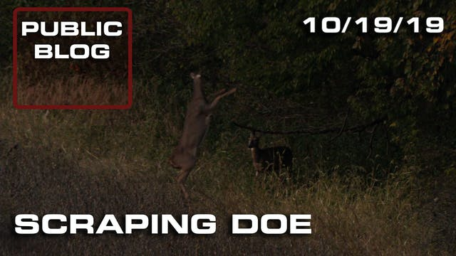 Public Land Blog | Scraping Doe