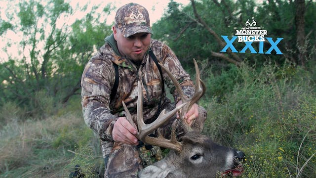 Stephen McNelly's Texas Toad | Monste...