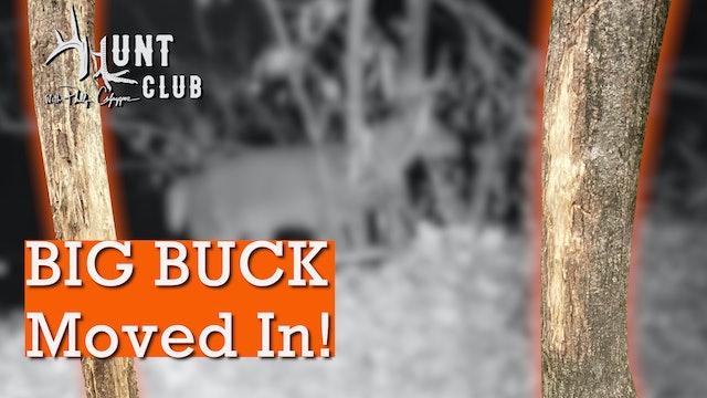 Giant Georgia Buck Rubs | Bucks Are Still Cruising for the Ladies | Hunt Club