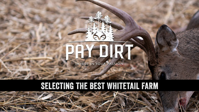 Dig Deeper: How to Select the Best Deer Hunting Property