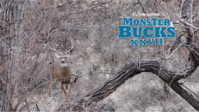 Brandon Adams Oklahoma Monster Buck