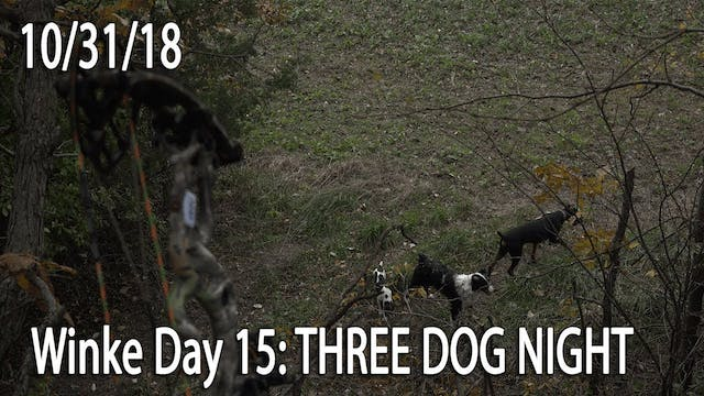 Winke Day 15: Three Dog Night