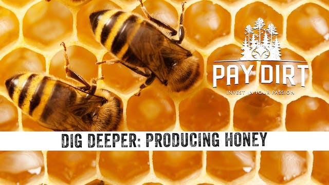 Dig Deeper: How To Make Honey