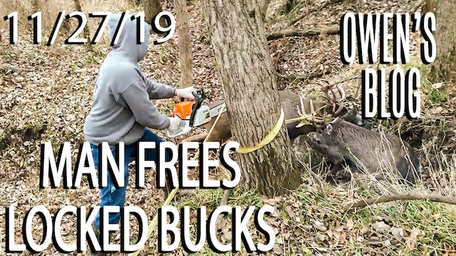 Owen's Blog : Locked Bucks Freed with Chainsaw