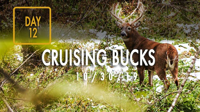 Jared Day 12: Cruising Bucks, First Snow