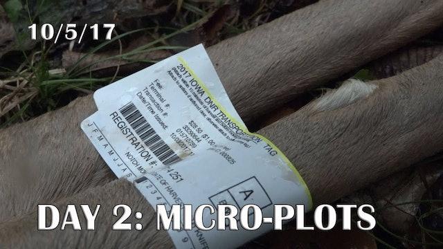 Winke Day 2: October Micro Plot Hunting