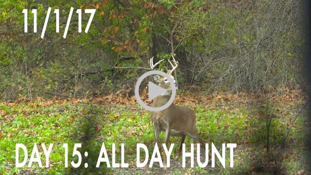 Winke Day 15: All Day Hunt