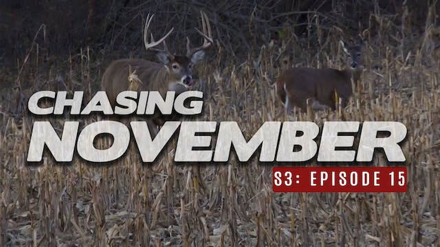 S3E15: Rattling in 3 Bucks, Chasing a...