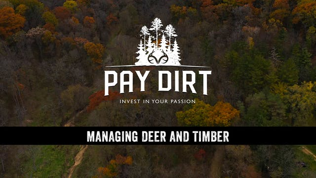 Managing Your Timber for Deer Habitat...