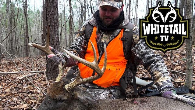 Alabama Deer Hunting: Big Southern Rutting Bucks