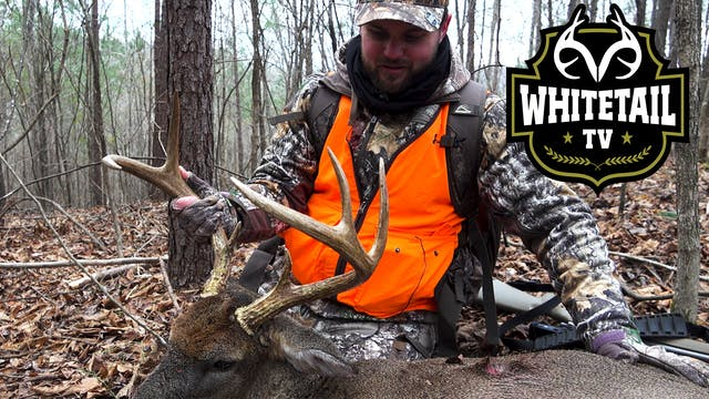 Alabama Deer Hunting: Big Southern Ru...