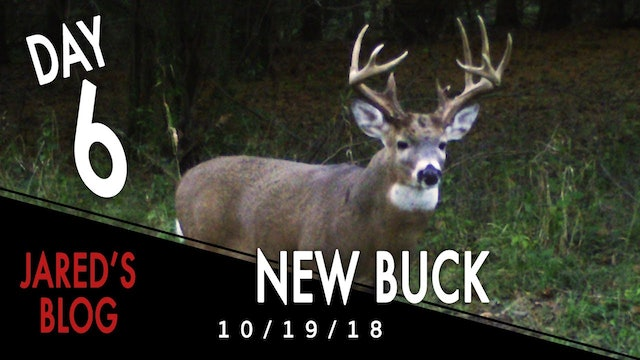 Jared's Blog: Finding a New Buck