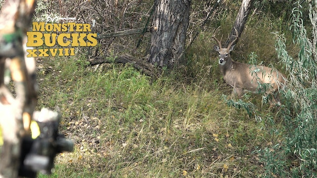 Phillip Vanderpool's Super-Tall Montana Whitetail | Realtree's Monster Bucks