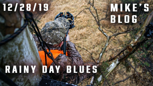 Mike's Blog: Rainy Day Blues, Rough Deer Hunting