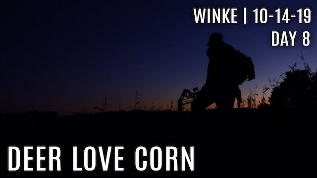 Winke Day 8: Deer Love Corn, Corn Plo...